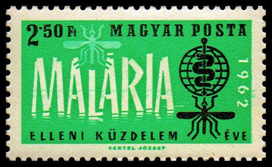 Malaria, una epidemia mundial