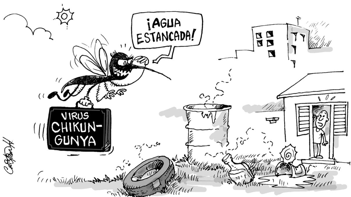 Chikungunya: preguntas y respuestas